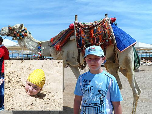 Пока кавалеры знакомятся с верблюдами...