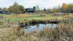 Маленький тихий пруд - одна из сотен ран, нанесенных земле бомбами фашистов.