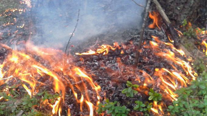 Осторожно, пожар!
