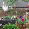 Погода не радует, но огород — по расписанию