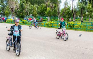 Гонки без правил… на велосипедах