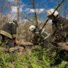 В районах Тверской области восстановлено электроснабжение