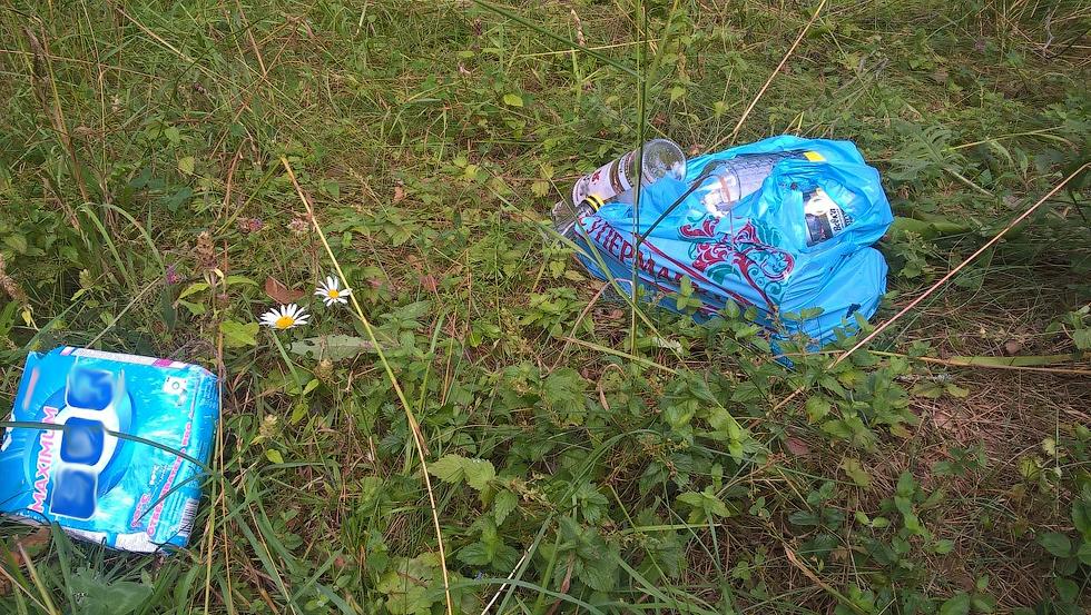Без стеснения люди бросают свой мусор под окна домов.