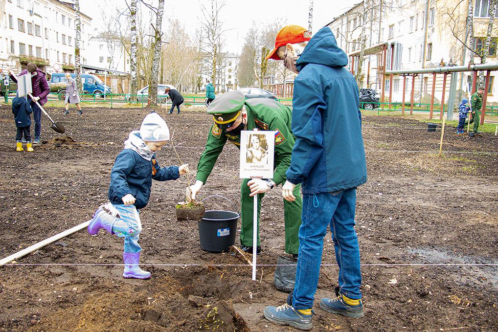 Высадка деревьев в дубовом сквере в честь 75-летия Победы.