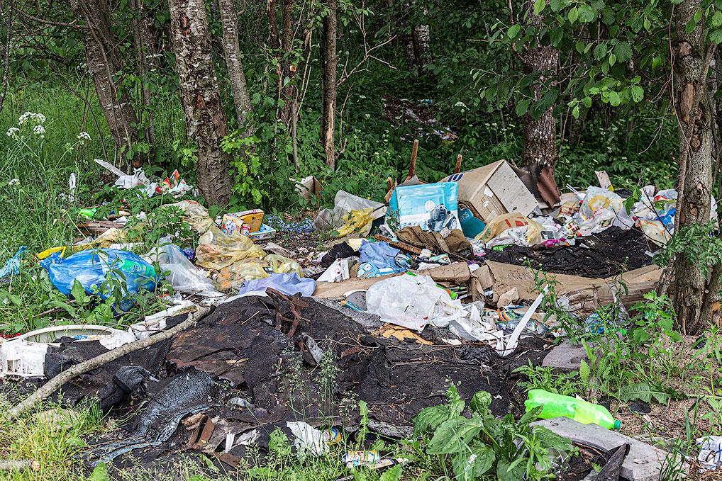 Вот такие горы мусора появляются в лесах возле садоводческих товариществ.