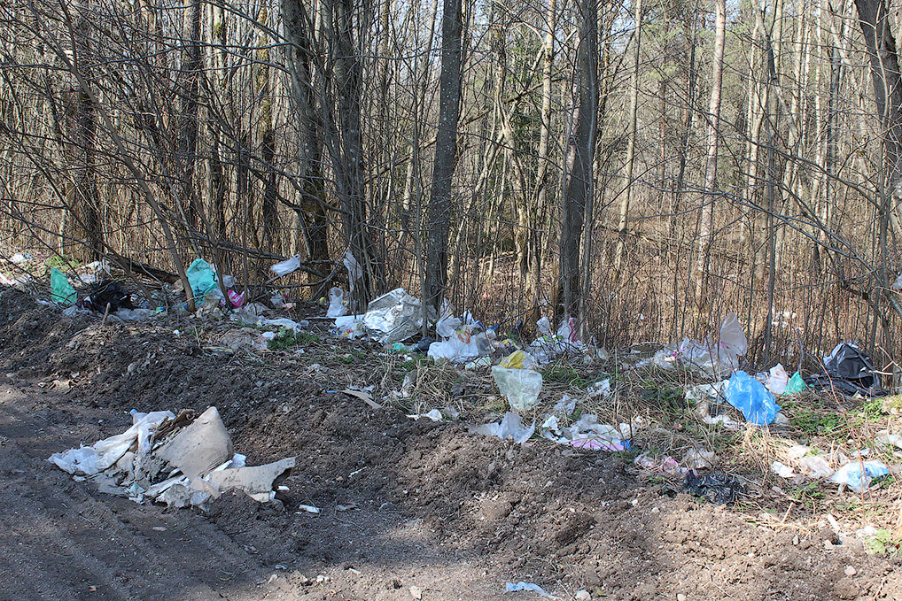 Вот так выглядит территория вокруг мусорного полигона.