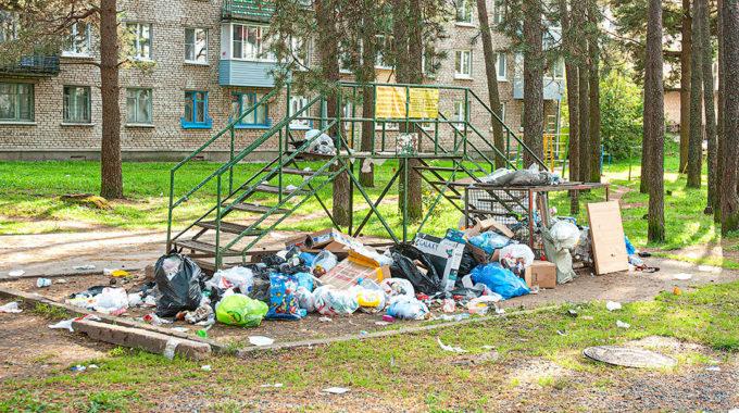 Выбросил мусор в неположенном месте — отвечай!